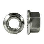 M10-1.25 Flange Nut