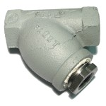 """1-1/4"""" Screwed End Y Strainer with Reducing Bushing"""