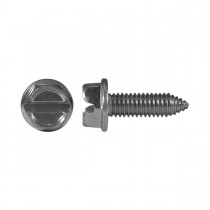 M6-1.0 x 20mm Slotted Truss Head/ Licence Plate Screw