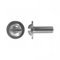 M6-1.0 x 16mm Licence Plate Screw