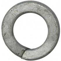 "7/16"" Regular Spring Lock Washers-Hot Dipped Galvanized"