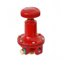 "High Pressure Adjustable Reg 1-60 PSI - 1/4"" FNPT Inlet/Outlet"